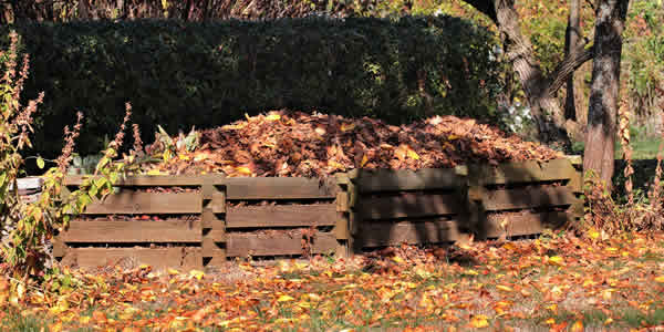 Compost with leaves