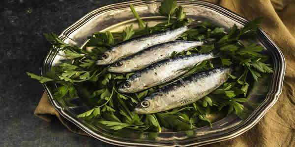 Bioaccumulation of PCBs in fish