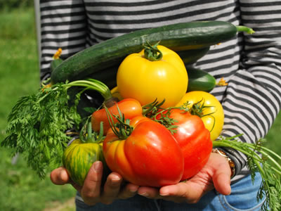 Home-grown veggies