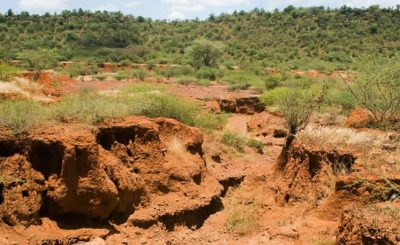 Effects of soil erosion on biodiversity