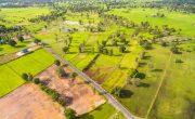 The Dangers of Habitat Fragmentation