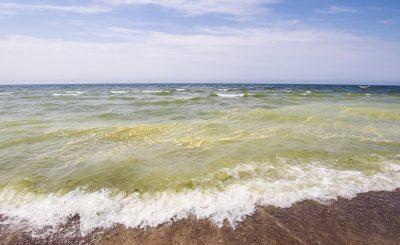 Causes of Marine Habitat Destruction
