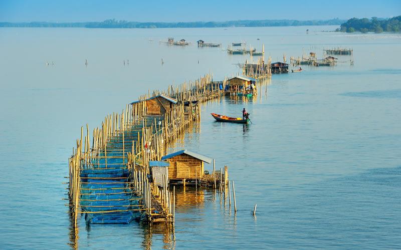 Ways to Make Aquaculture Sustainable