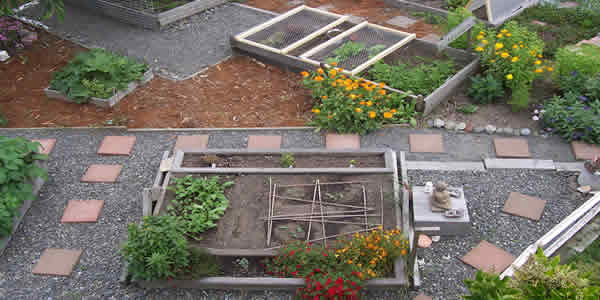Shared backyard urban agriculture