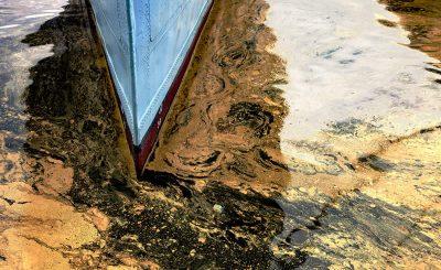 Bioremediation of Oil Spills
