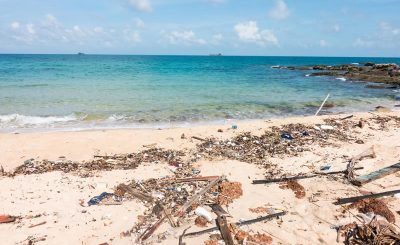 Effects of Marine Pollution on Human Health
