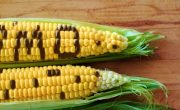 Pros and cons of GMO's