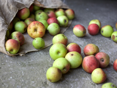 Apples going to waste