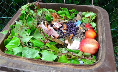 Key facts on food waste you should know