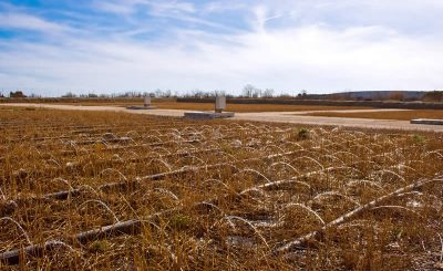 The efficiency of constructed wetlands for wastewater treatment