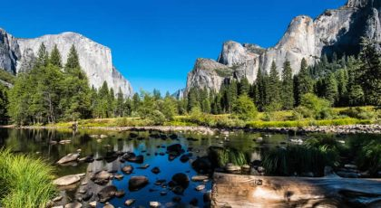 The importance of national parks for conservation