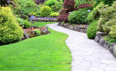 reasons why landscape architecture is important