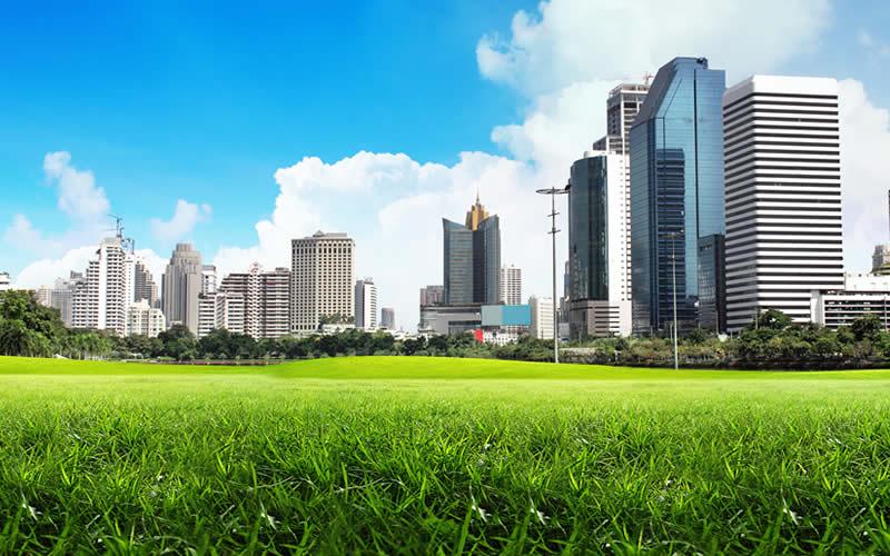 Urban Rewilding Concept- Successful Examples