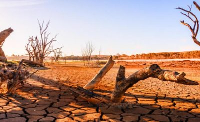 effects of climate change on the environment