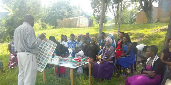 Agricultural education about dealing with impacts of climate change