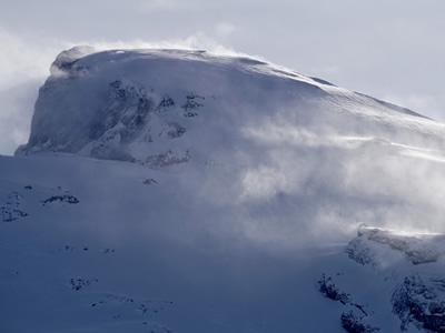 Frozen Ice Age-like landscape