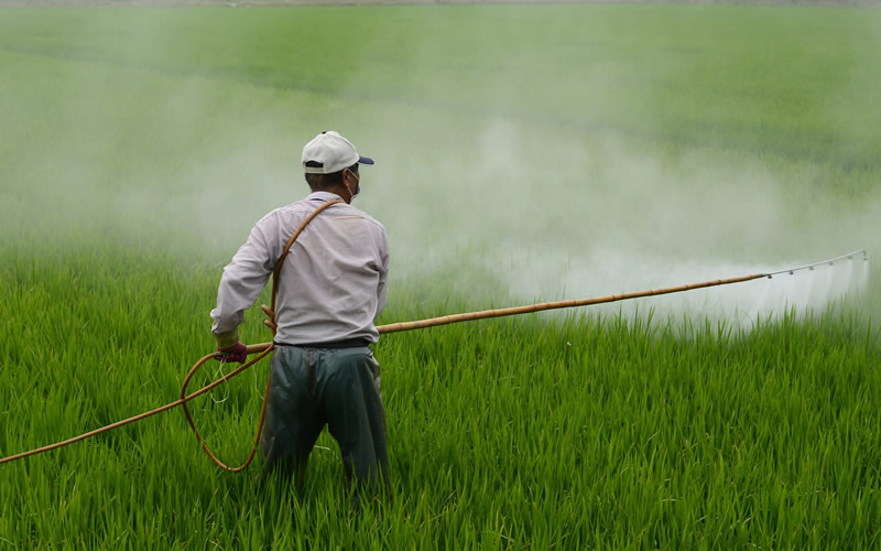The-effect-of-pesticides-on-farm-employees