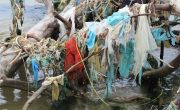 Ocean and Water Pollution