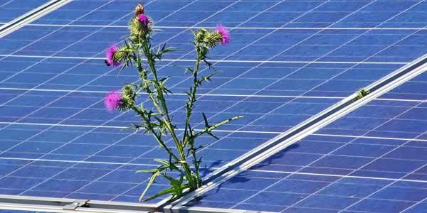 Solar panels' lifetime