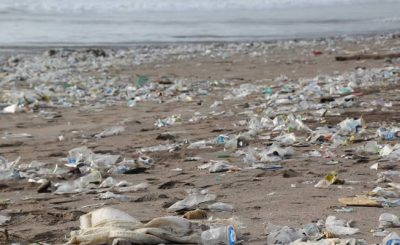 The state of plastic pollution