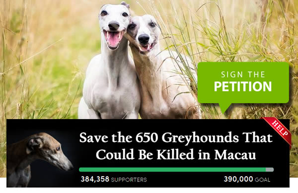 Save Greyhounds