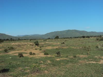 Bare river bank in Chikwawa, Southern Malawi