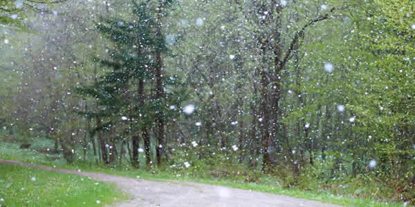 Hail affects solar panel efficiency