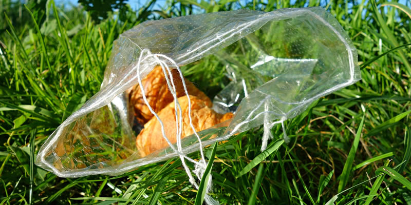 Biodegradable vs compostable plastic bag