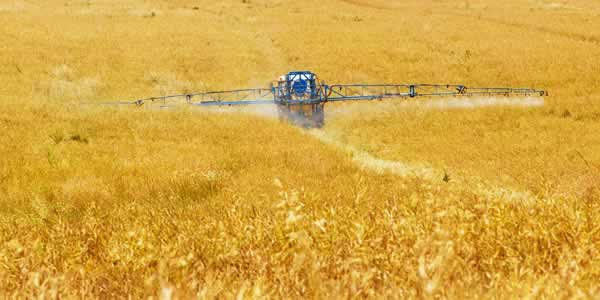 Pesticide residues on crops