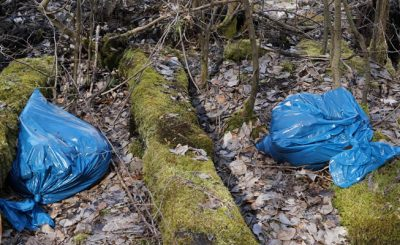 Impact of plastic bags on environment