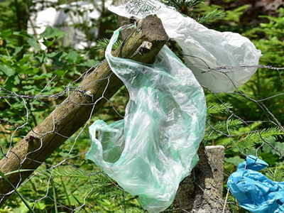 Plastic bags contaminating the environment