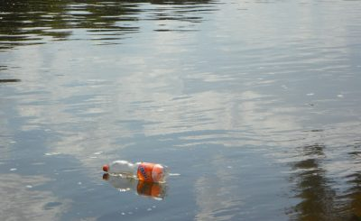 Plastic bottles in the environment