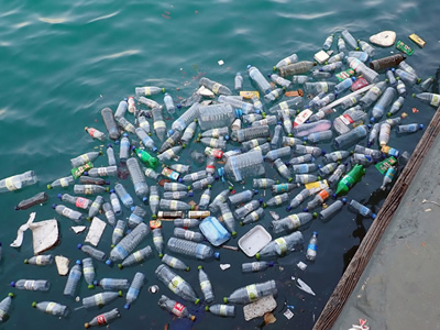 Improperly discarded plastic bottles