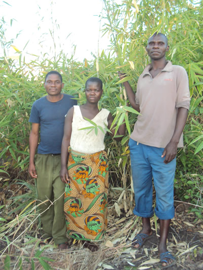 Nyamulani, Bonongwe and Saidi in front of some of the bamboos they are looking after