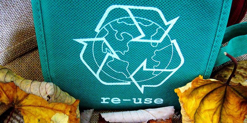 reuse-bag