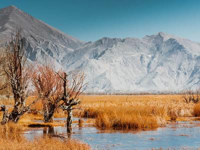 Tibet Lalu wetland