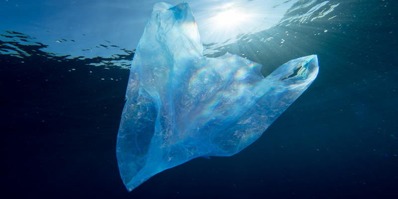 Reasons for banning plastic bags