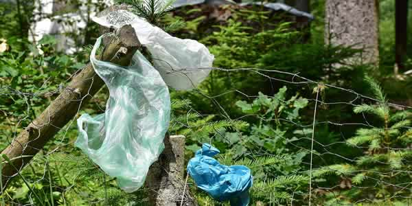 Plastic bag waste polluting nature