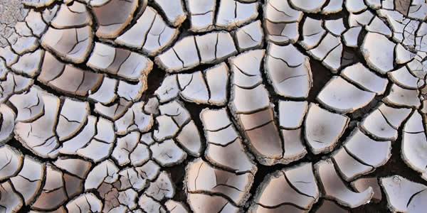 Eroded clayish soil